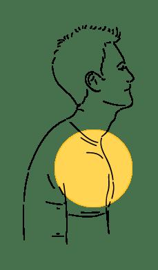 Rounded Shoulder